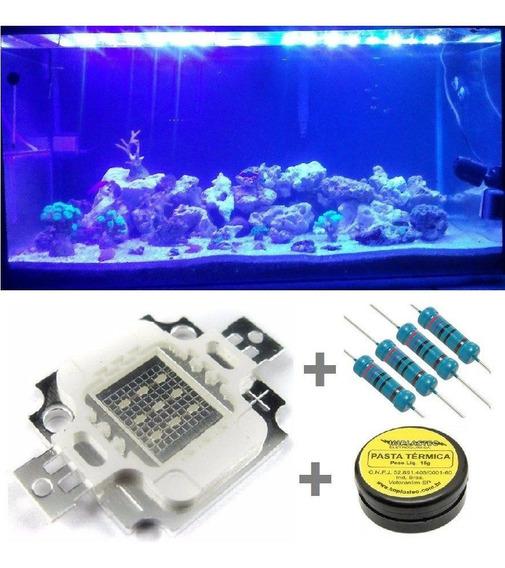 Power Led Chip 10w Azul Royal Blue 440-450nm Grow 10 Peças