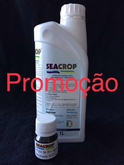 Fertilizante Seacrop / Rootex/ Himitsu Kit Fracionado