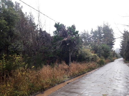 Imagen 1 de 6 de Terreno Lote  En Venta Ubicado En Península San Pedro, Bariloche
