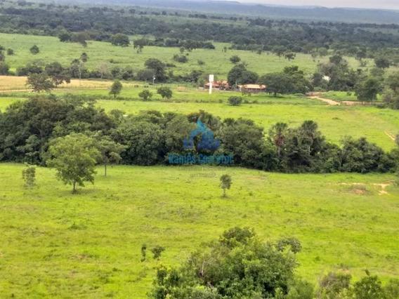 Fazenda Com 617 Ha Dupla Aptidão Em Gurupi To - Rc4