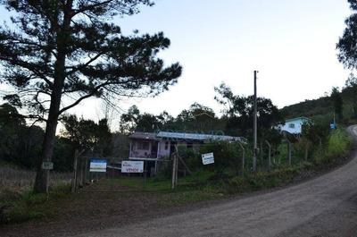 Sítio Rural À Venda, Vale Dos Pinheiros, Gramado. - Si0065