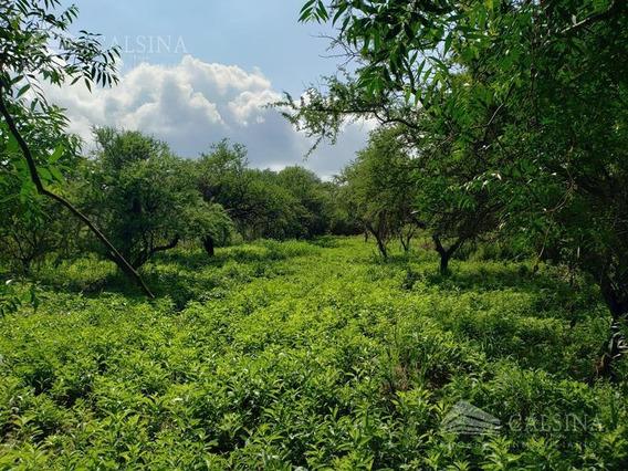 Terreno En Venta - Mendiolaza Golf - Cba