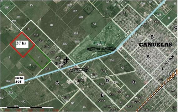 Campo 37 Has Cañuelas (uso Mixto/zona Apto Country)