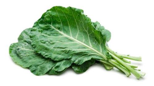 Sementes De Couve Kale Califórnia Exótico      360 Sementes