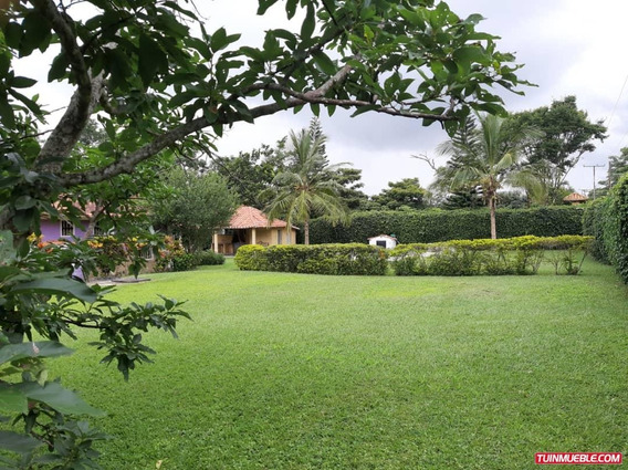 Haciendas - Fincas En Carabobo Bejuma Aguirre