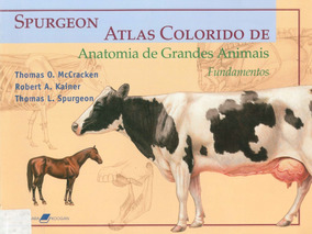 Livro Atlas Colorido De Anatomia De Grandes Animais