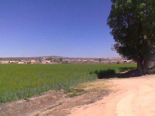 Terreno En Santa María Auxiliadora, Col. La Estancia/ León (guanajuato)