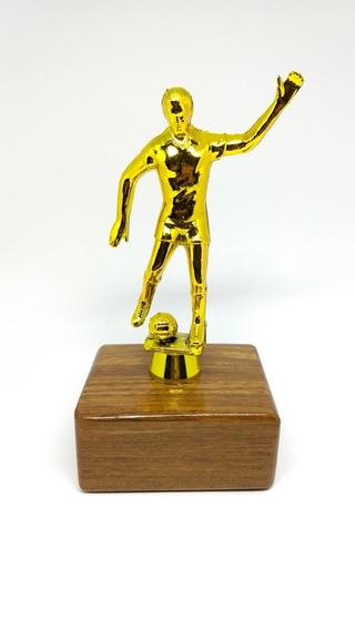 Troféu De Futebol Com Base De Madeira. Futebol, Pes, Soccer