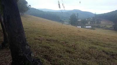 fazenda A Venda Com 315 Alqueires No Sul De Minas - 1254
