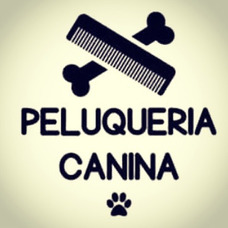 Peluquería Canina A Domicilio Y Cursos De Peluqueria Canina