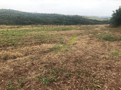 Imagem 1 de 11 de Fazenda Em Atibaia 50 Alqueires No Asfalto - 846