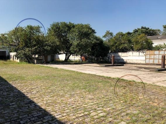 Terreno Para Venda, 4137.0 M2, Socorro - São Paulo - 6199