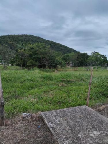 Terreno À Venda, 361 M² Por R$ 135.000,00 - Guarda Do Cubatão - Palhoça/sc - Te0856