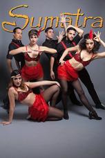 Show Bailarines Cantantes Bandas Coreos Bodas 15 Bat Cumples