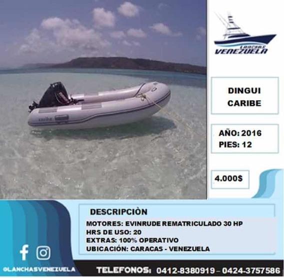 Dingui Caribe C20
