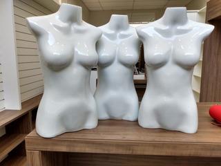 3 Manequins Busto Meio Corpo