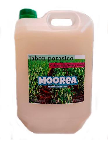 Jabon Potasico C/  Neem Y Canela 5lts Insecticida Natural