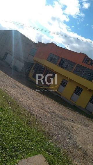Depósito/pavilhão Em Vila Cledi - Mf18967