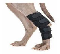 Protector De Tarso Neoprene Para Perros Ortopedia Canina