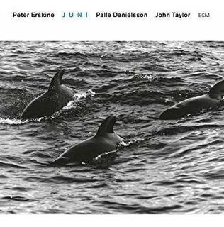 Erskine Peter / Danielsson Palle / Taylor John Juni Cd