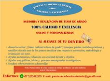 Asesores Académicos En Tesis De Grado, Monografías Y Otros