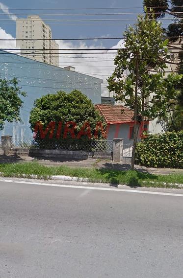 Terreno Em Tucuruvi - São Paulo, Sp - 334436