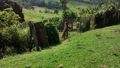 Fazenda Moeda 62 Hectares- Perto De Belo Horizonte - 1389
