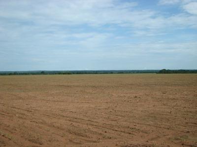 Fazenda Em Sandolândia - To, Dupla Aptidão - 115