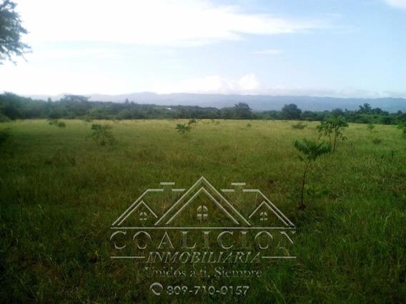 Coalicion Vende En Moca 32 Tareas Tierra Agricola $ 3.7