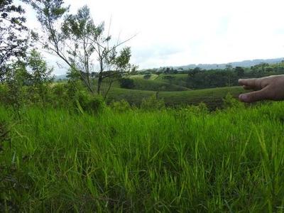 Venta De Terreno En Quimbaya