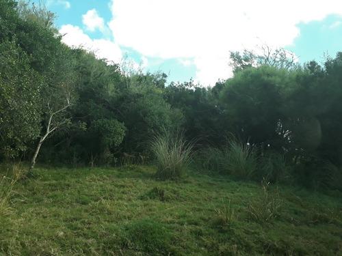 Campo Agri/ganadero En Rocha  Solo Venta!!