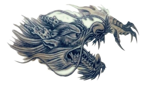 Tatuaje Tatoo Dragon Temporal 20x32
