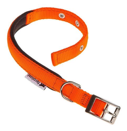 Collar Perro Ferplast Daytona Talle M / Mundo Mascota