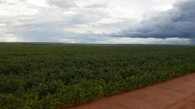 Fazenda Para Venda Em Paranatinga, Área Zona Rural Paranatinga/mt R$ 650.000.000 - 35371