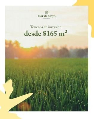 Lotes De Inversión Flor De Mayo Paraíso En Progreso