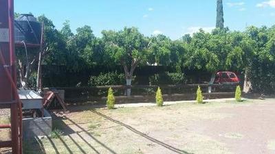 Terreno En Venta (uso Agropecuario) - Ejido La Sonaja (la Luz Del Día), Irapuato, Gto.