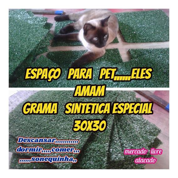 Placa De Grama Relaxante P/pets Em Geral Kit C/05 Placas