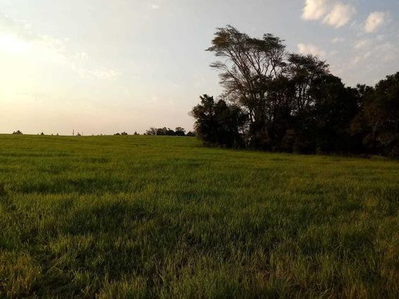 2 Ou 3 Hectares Terra / Chácara / Sítio / Campo / Rural