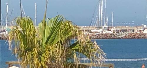 X Día.rambla Frente Al Mar 2 Dor. Wifi.aire.directv. Nuevo