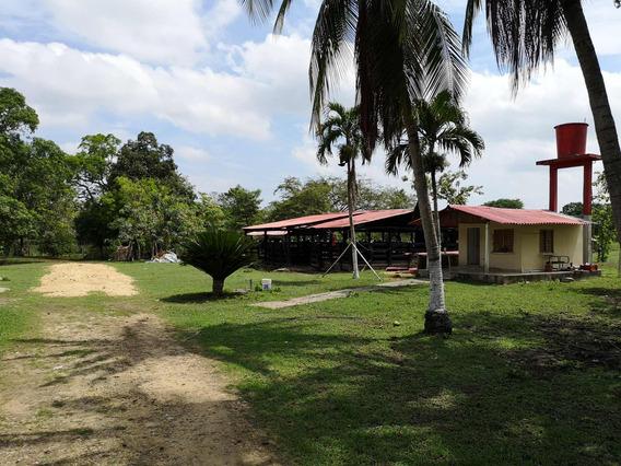 Santa Rosa - Villanueva Venta De Finca