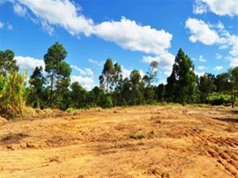 Imagem 1 de 4 de Terreno Residencial À Venda, Brigadeiro Tobias, Sorocaba - Te2913. - Te2913