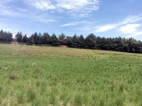 Terreno Cacalomacán Lotes 400 M2, Calz. Pacífico, Corredores