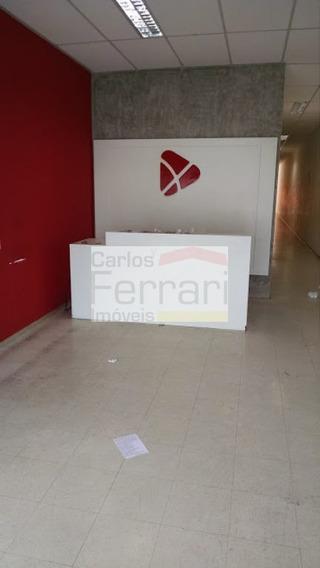 Loja Santana - Cf23802