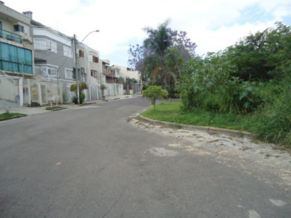 Terreno Em Ipanema - Pa1480