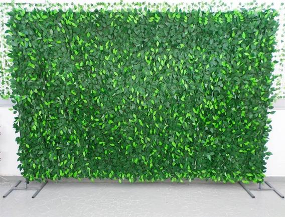 Muro Inglês Artificial Folha Fícus 2 X 1 Mts Decoração Flora