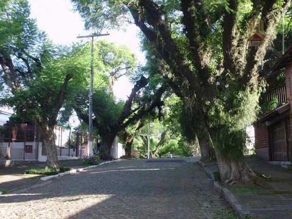 Terreno Residencial À Venda, Bairro Vila Ipiranga, Porto Alegre. - Te0100