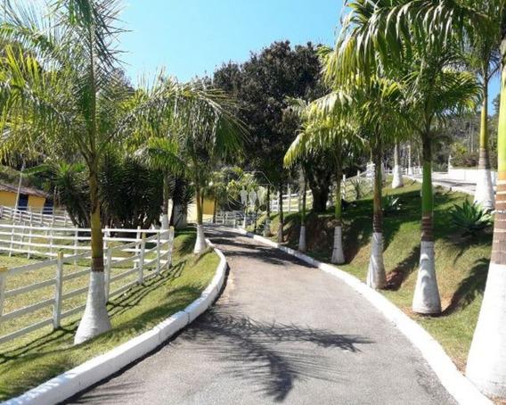 Sitio Para Venda Champirra, Jundiaí, 38.942,00 Total ( 3,8 Hectares ) - St00005 - 32166514