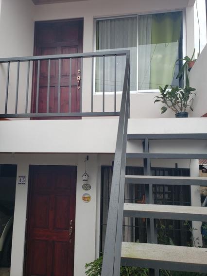 Apartamento Semi Amueblado San Rafael Montes De Oca
