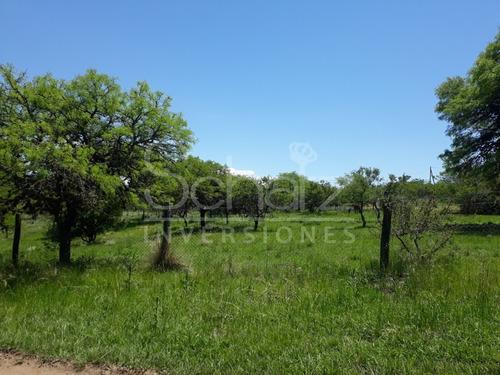 Imagen 1 de 2 de Terreno En Villa Castelar