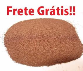 Cisto De Artemia Salina 500g - Frete Grátis Promoção